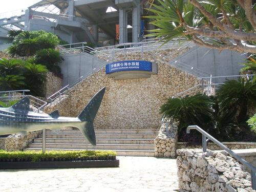 2-03 水族館1